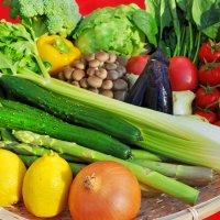 エムエーフーズ「お野菜とどけ隊。」