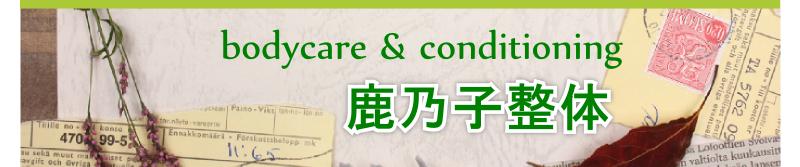 鹿乃子整体 成田本院