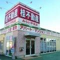 桂不動産株式会社 みらい平支店/賃貸センター