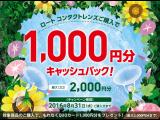 ロートよりお得なキャッシュバックキャンペーン!!