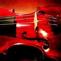 弦楽器工房Watanabe