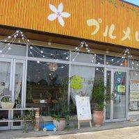 ロミロミ、ヒーリングで心と体を癒す プルメリア cafe