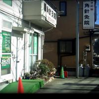 江戸川区で肩こり 腰痛 股関節痛改善で評判の【角針灸院】