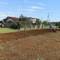 高柳貸し家庭菜園(kasiwa Farm)