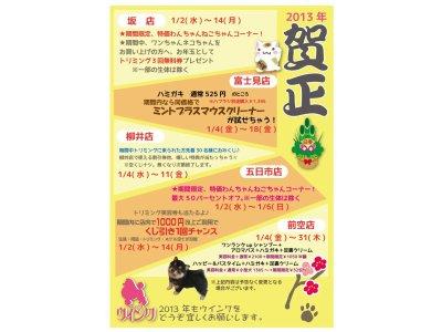 新春キャンペーン☆~1/14(月)まで