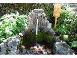 眞名井の湧水
