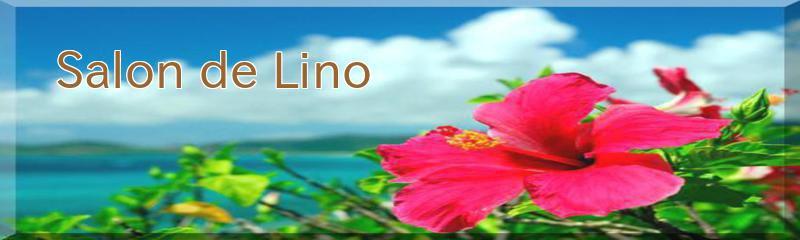 Salon de Lino