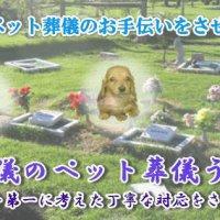 ペット葬儀うたたね
