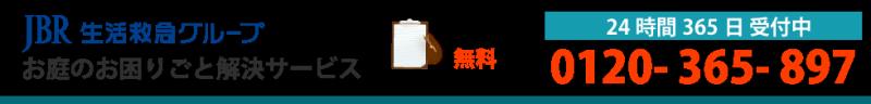 墨田区の樹木・庭木・植木の剪定 立ち木・植栽・生垣のお手入れ 造園 伐採 消毒 草刈り 芝刈り 除草や庭のガーデニング・植木屋サービスなら庭師のJBR 0120-365-897