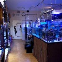 まちの水族館アクアショップ ビビアン