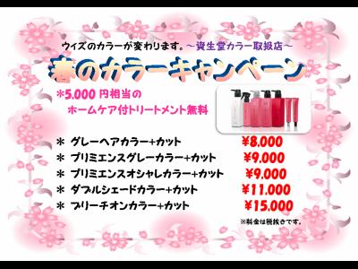 【春のカラーキャンペーン】