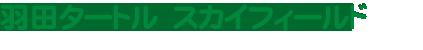 羽田タートル スカイフィールド フットサルコート