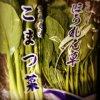茨城産 小松菜2P ほうれん草1P 水菜2P 各100円