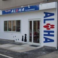 Dog salon  ALOHA