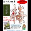 デジカメ散歩 IN 小石川後楽園【お知らせ】