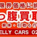 クルマ買取&販売 BELLY CARS