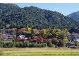 ★ 秋深まり、山里に紅色染まりつつ♪