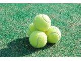 テニススクール【平日昼間クラス】
