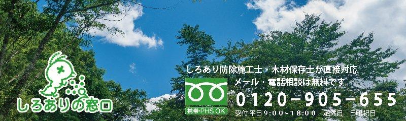 佐賀でシロアリ駆除・羽アリ駆除のご相談は専門家による「しろありの窓口」にご相談ください!