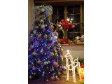 ★ クリスマスツリー リニューアル♪