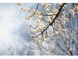 3月スタート♪(〃´∀`)