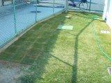 芝生を張りました