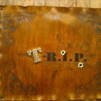 darts bar T-R.I.P. (ダーツバー ティーリップ)