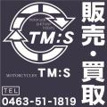 MOTORCYCLES TM:S