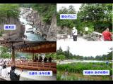 参考観光プラン3   世界文化遺産:平泉 中尊寺・毛越寺・他