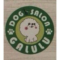 DOG SALON  GALULU