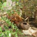 千葉 八千代市 季緑園(きりょくえん)造園 植木 お庭管理