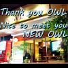 いよいよ明日 Salon OWL のファーストステージの幕が降ります!