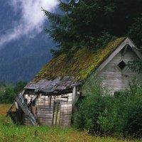 住まいの便利屋・屋根と住まいの工房