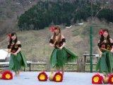札幌 フラダンススクール 札幌 野外イベント