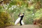 在日の風 韓国同胞結婚サイト