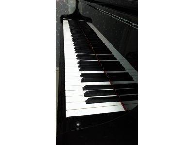 教室使用楽器