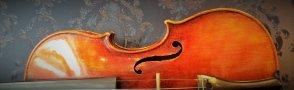 弦楽器ショップWorld