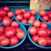 山盛りトマト 1山200円