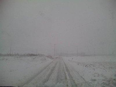 田舎道の雪化粧