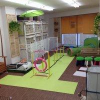 犬の民宿 & 遊戯場  ワンズワンダー