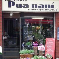 FlowerWorks Pua nani