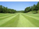 秋のゴルフシーズンに備えましょう!
