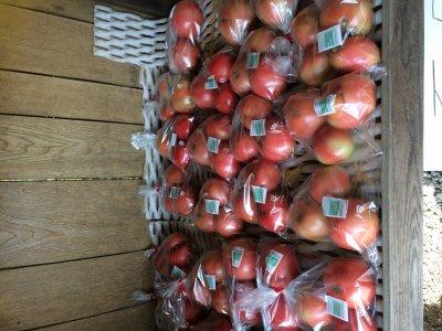 トマト・新高あります!