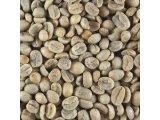 コーヒー生豆ってご存知ですか