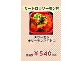『サートロサーモン丼』