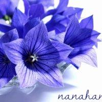 nanahana~七華~ メリディアンメソッドセラピスト  スペシャルトレーニングスクール