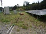 太陽光発電所のメンテナンス・草刈り作業承ります。鹿児島地区