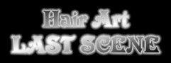 Hair Art LAST SCENE