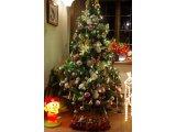 ★ 今年のクリスマスツリーはワンランクアップしました。