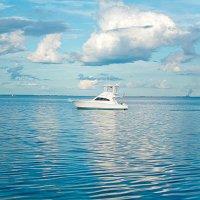 ボート免許更新 相模海事代理士事務所
